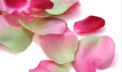 Lide Fleurs 2
