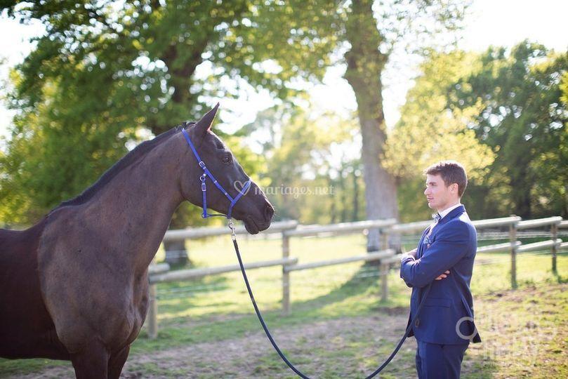 Photo marié avec cheval
