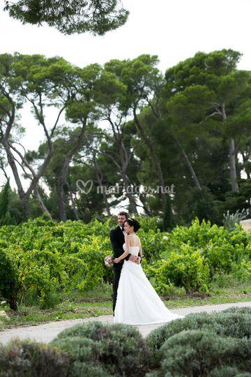 Mariés, pins et lavandes