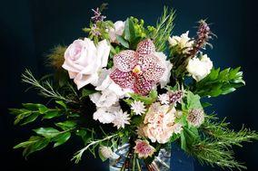 Branches et Fleurs