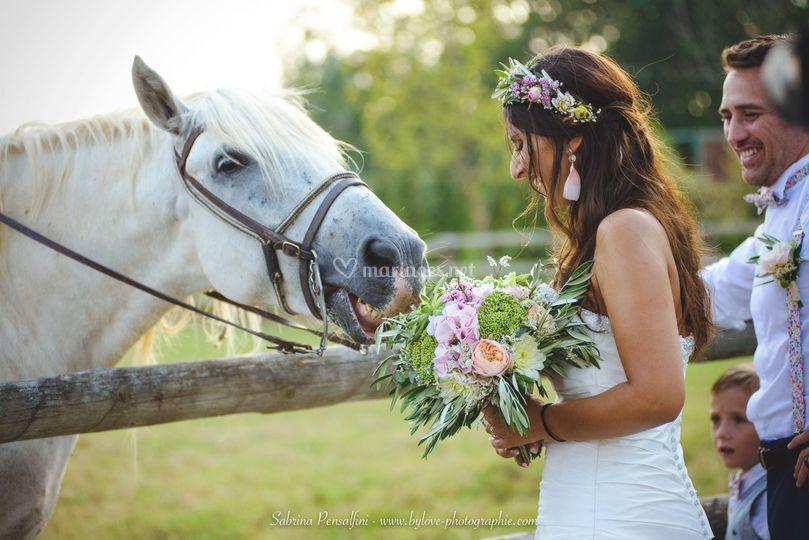 Mariage en Hérault
