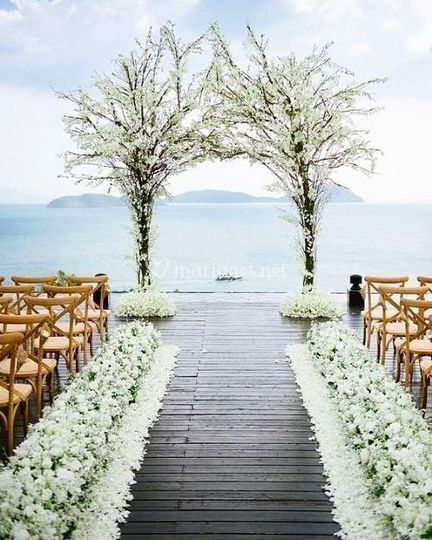 Oui Do It - Weddings and Events