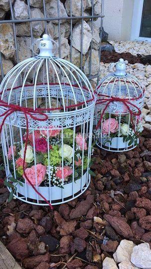 La cage fleurie