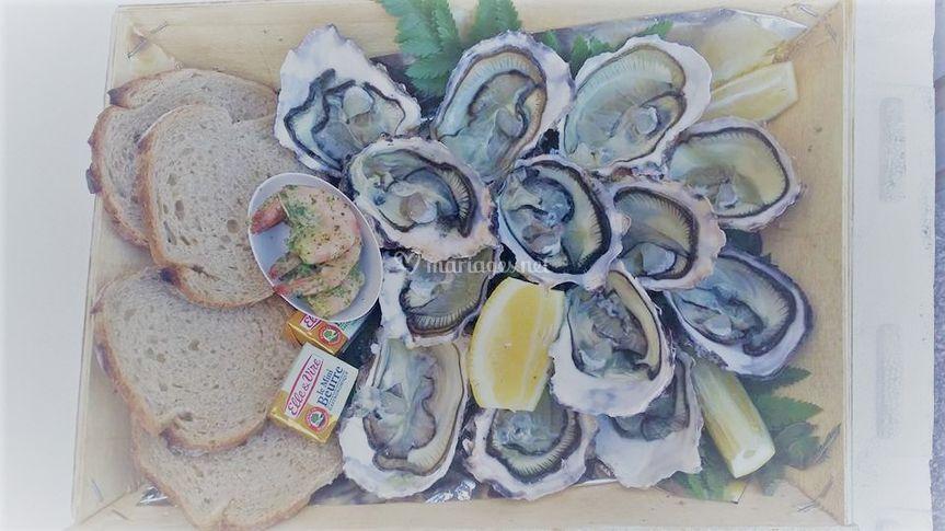 Les huîtres de Leucate