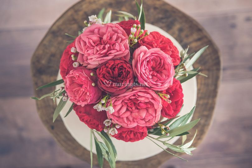 Nude roses ancienne macro