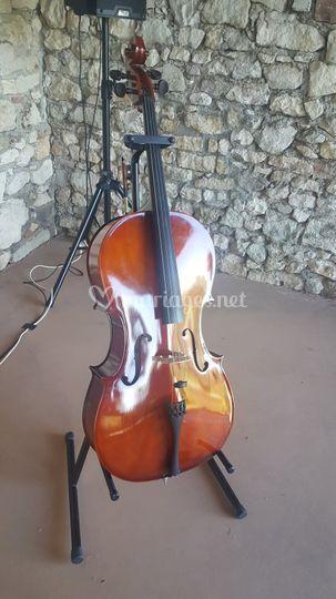 Violoncelle - Cérémonie