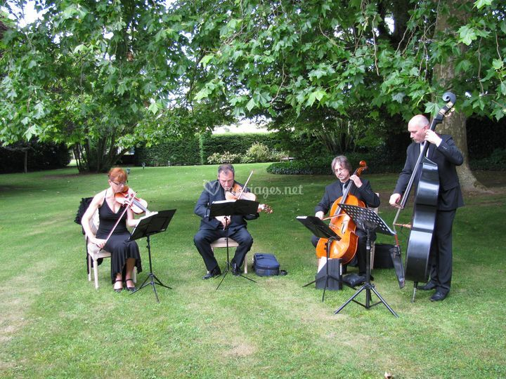 Musiciens dans le parc