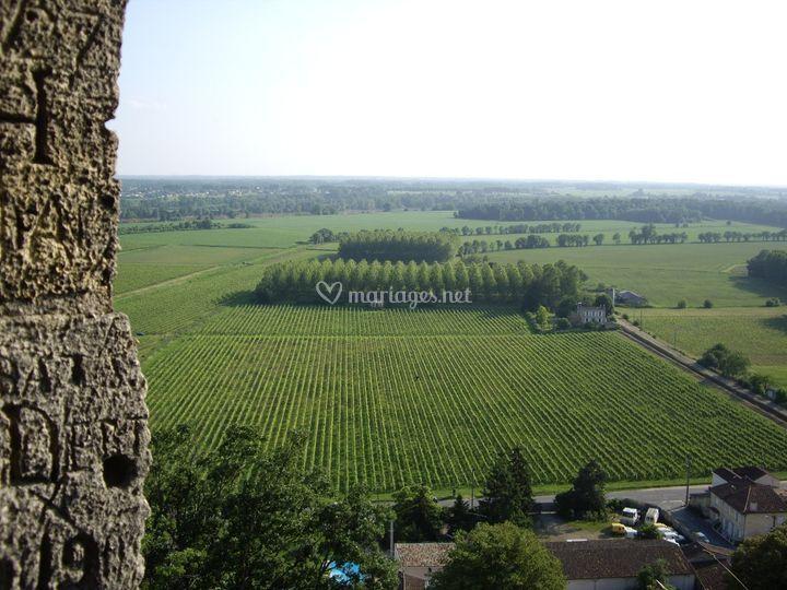 Vue panoramique sur la vallée de la Garonne