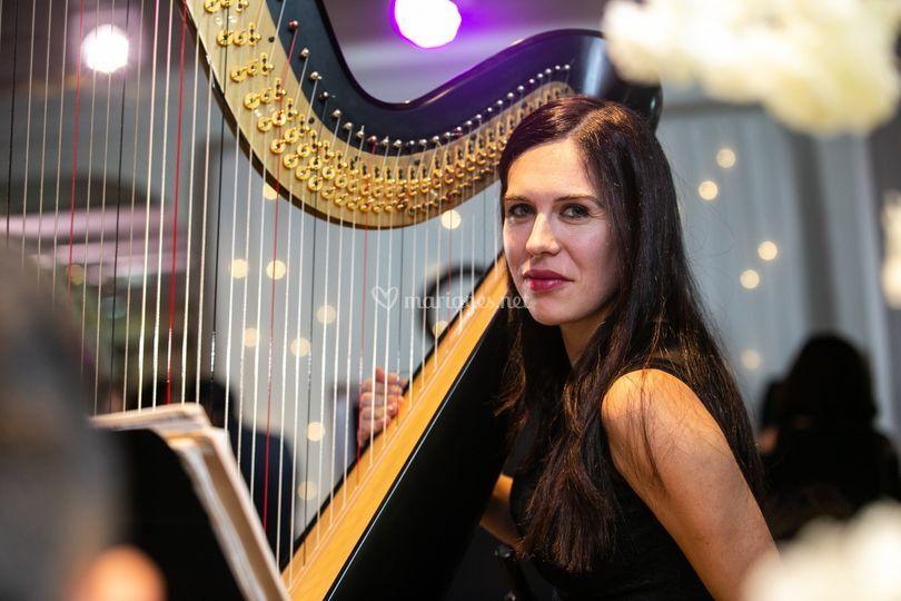Dora Vlad Harpiste