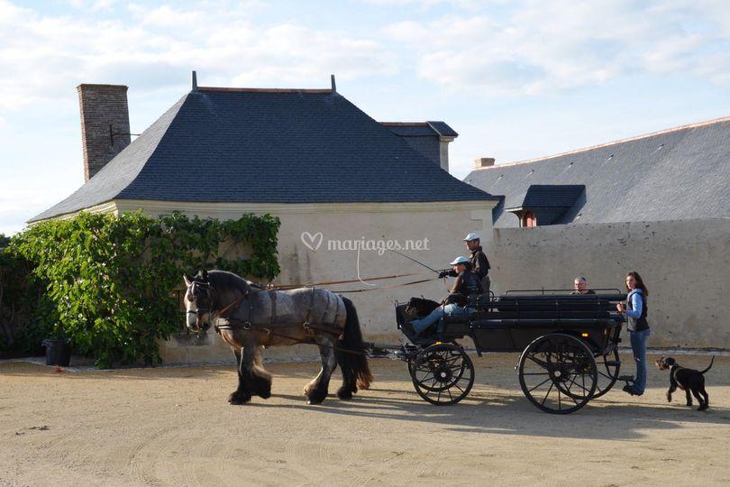 Grande wagonnette