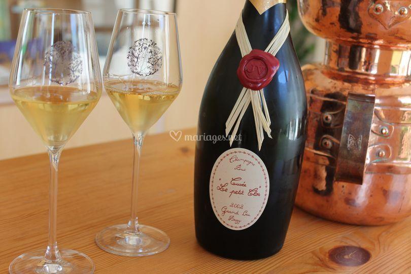 In Vino Bacchetta