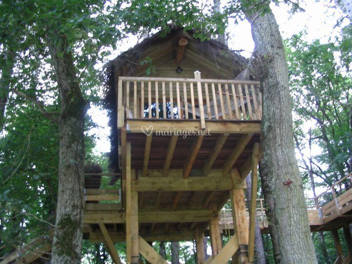 1 cabane dans les arbres
