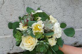 Art Floral Maison Terramatte