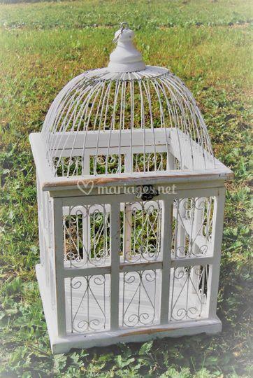Location de cage à oiseau