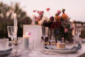 SP Wedding & Event Planner