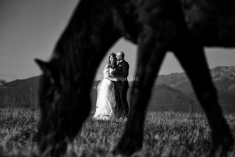 Deux et un cheval
