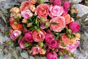 Fleurs d'Azur