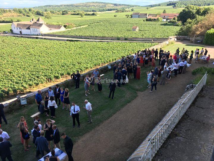 Cocktail devant les vignes