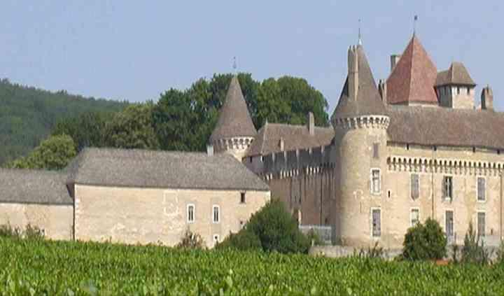 Mariés devant le château