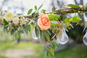 Les Fleurs de Riton