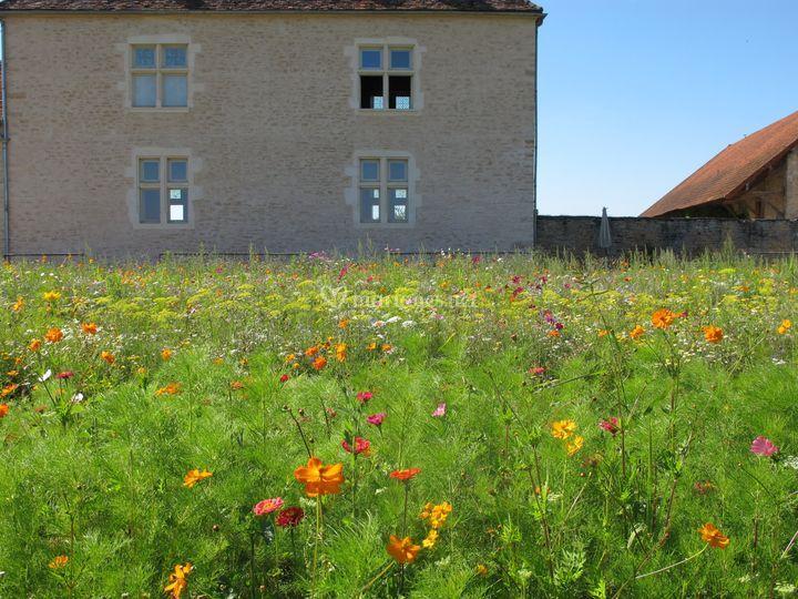Labyrinthe de fleurs