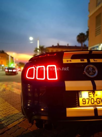 Shelby by night...
