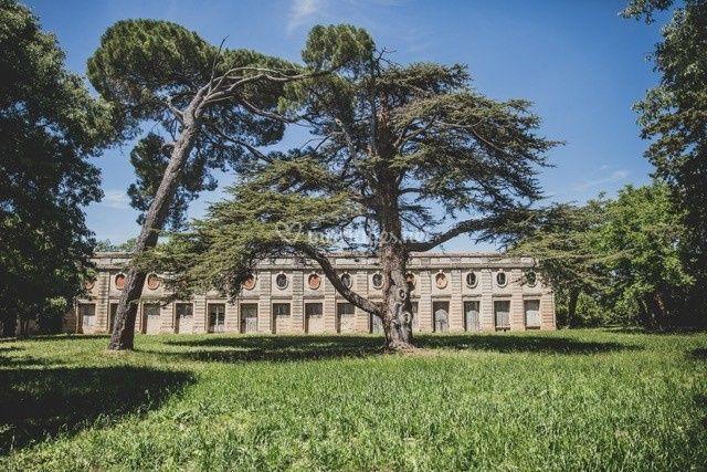 Château du Domaine du Bosc