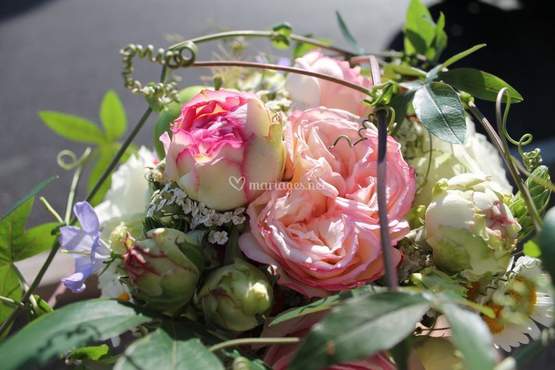 Maud Créations Florales