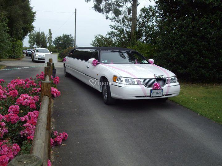 Arrivée de la limousine