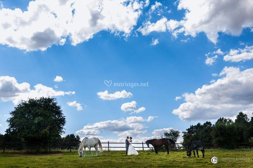 Mariés avec des chevaux