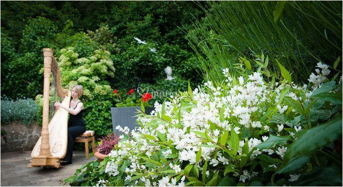 Dans un jardin privé