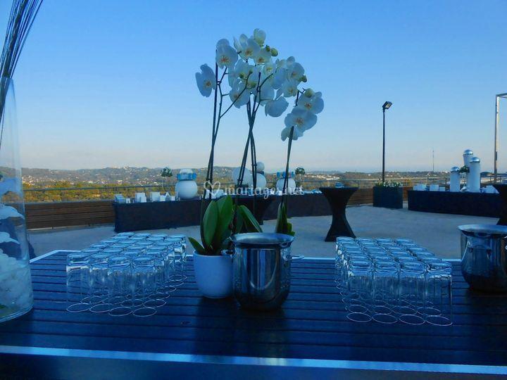 Terrasse, vin d'honneur