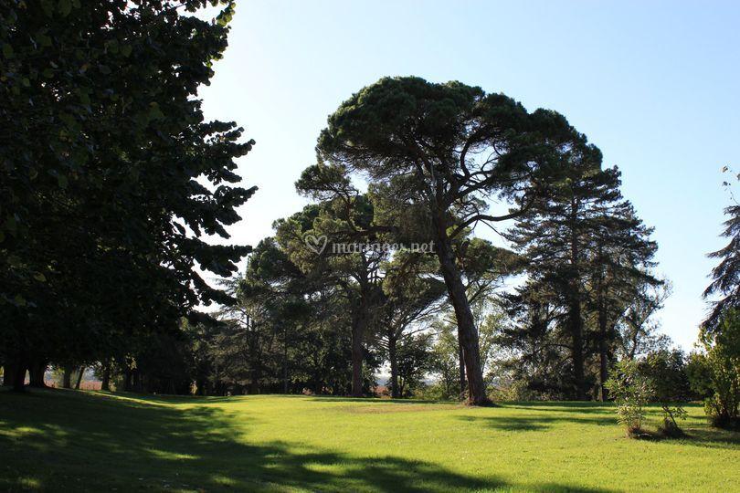 Un aperçu du parc