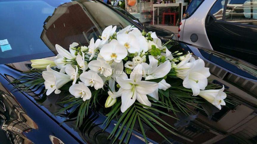 Décoration Florale Orchidée