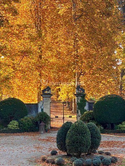Autumnal entrance