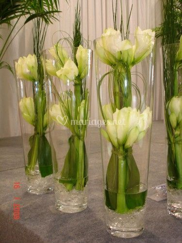Vases cylindriques