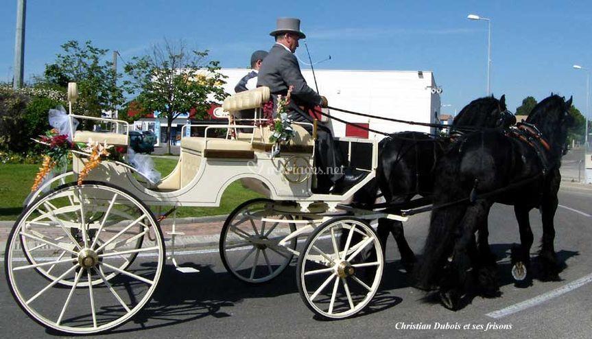 Calèche tirée par deux chevaux