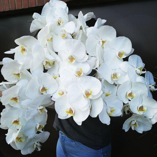 Pour de belles création floral.