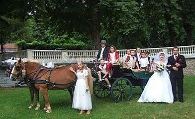 famille en caleche sur mariage en calche - Mariage En Caleche