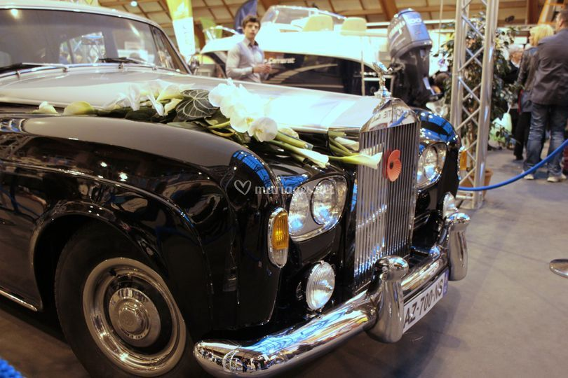 Prestige Cars Events