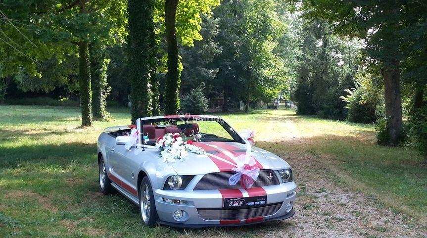 Decoration pour mariage