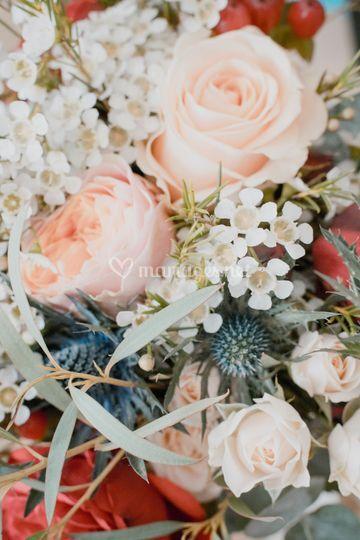 Palette de fleurs, Doune Photo