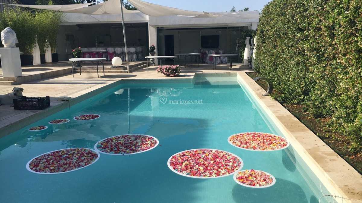 Deco piscine de Villa Les Roses | Photo 16