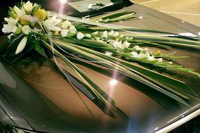 Fleurs Elégance by Emma