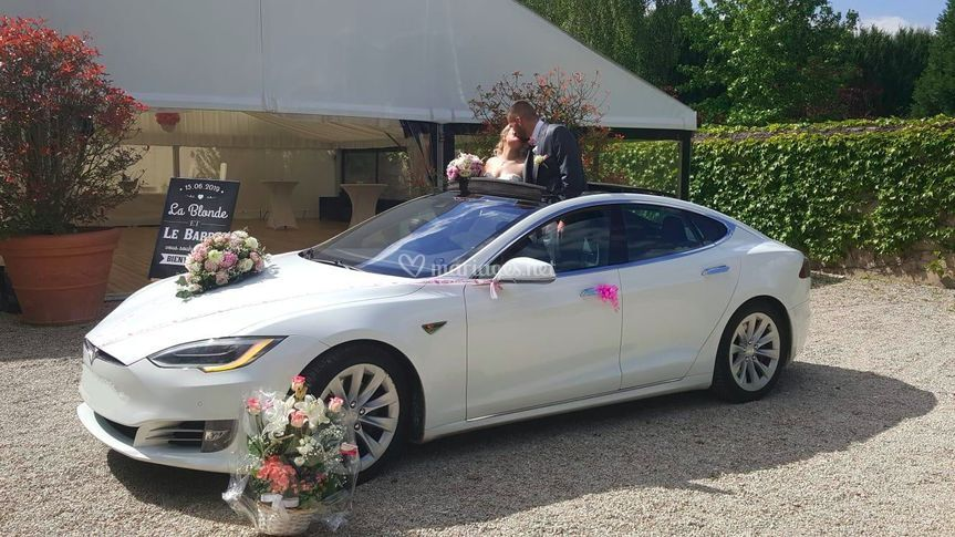 Transfer airport Tesla Model S