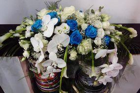Fleurs d'Anges