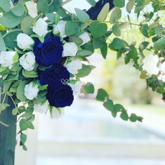 Arche roses bleues