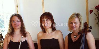 Trio Arpeggione, le groupe
