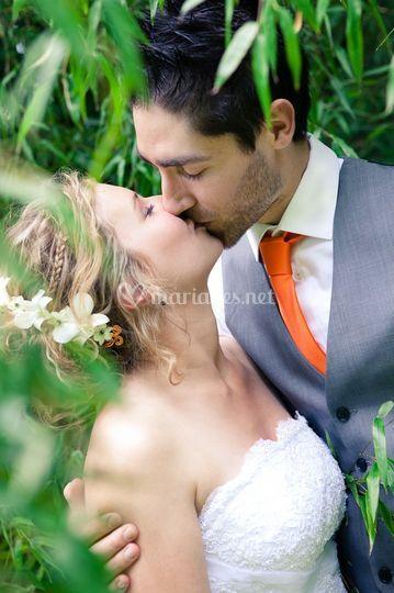 Bamboo kiss