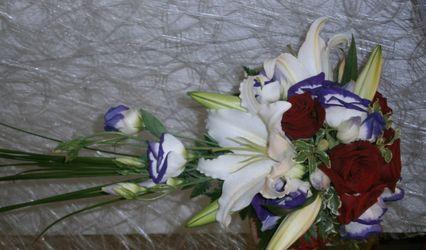 Iris Flor 1